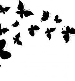 butterfly black and white image 44692 [ 2100 x 1200 Pixel ]
