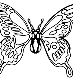 butterfly black butterfly clipart black and white png [ 1367 x 1054 Pixel ]