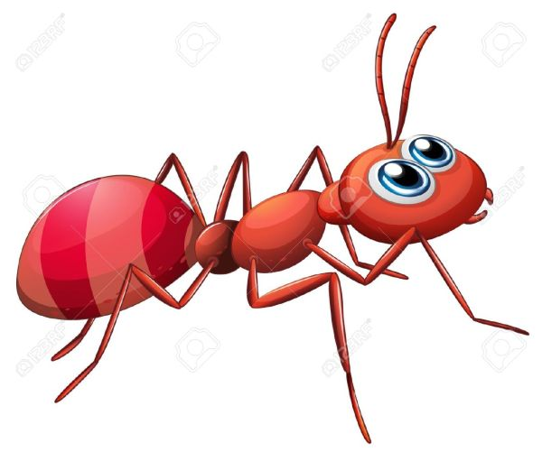 ant clipart #12111