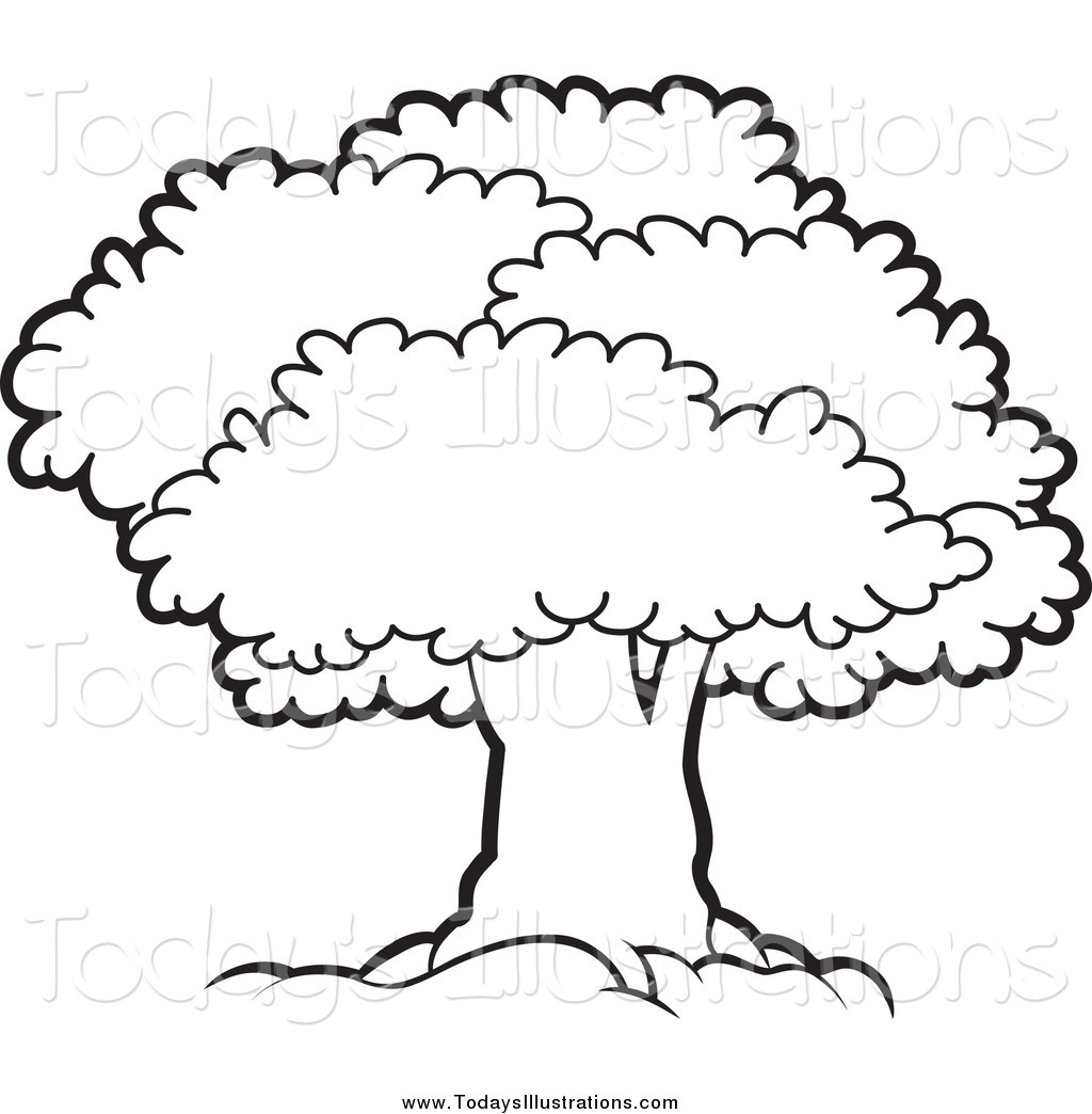 Best Tree Clipart Black And White