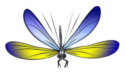 dragonfly clipart #12573