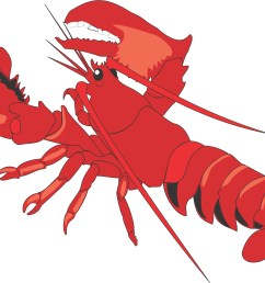 lobster clipart images free clipart images [ 2439 x 1717 Pixel ]