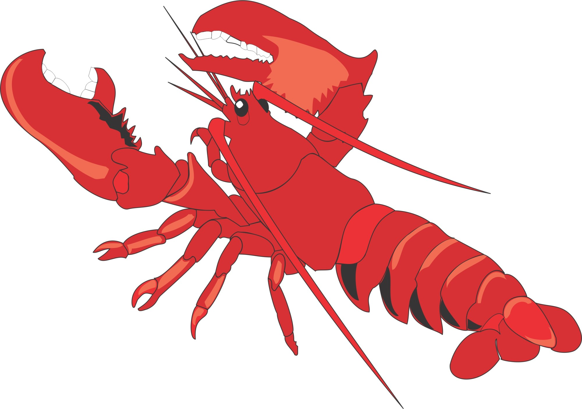 hight resolution of lobster clipart images free clipart images