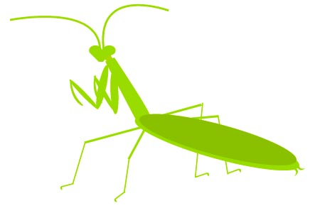 mantis clipart - clipartion