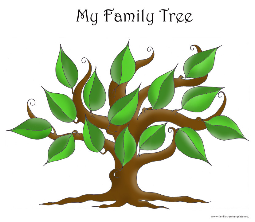 family tree outline template