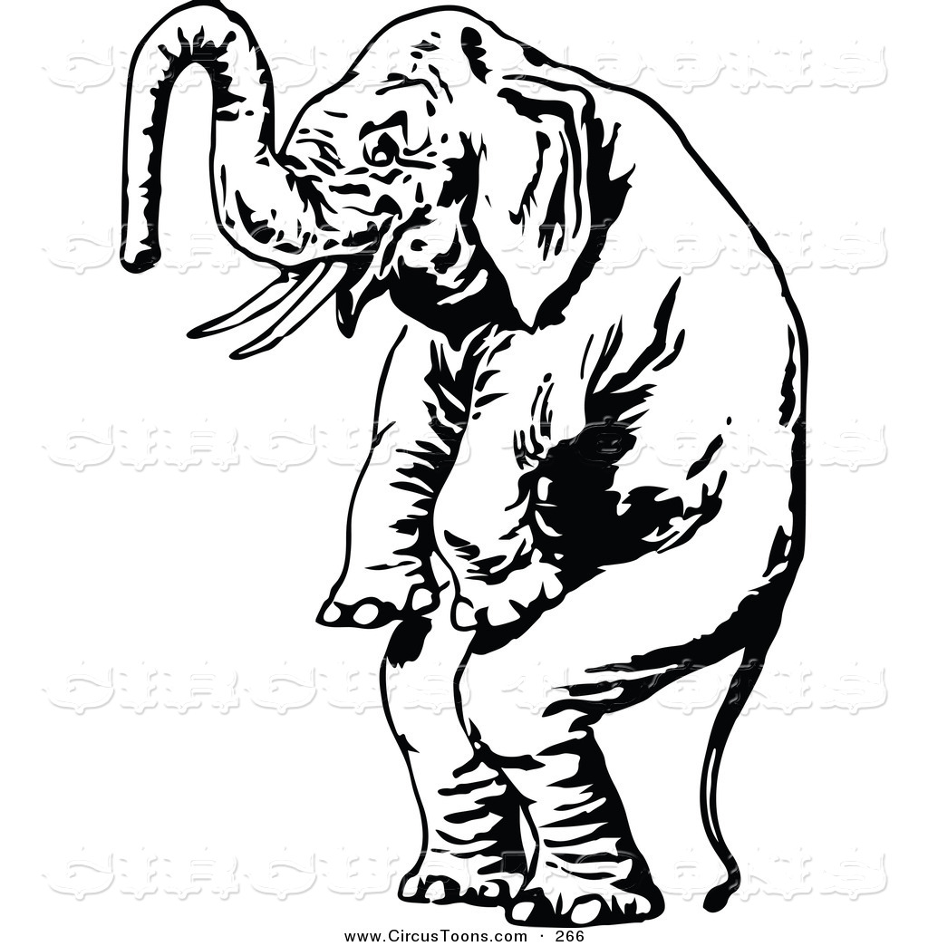 Best Cute Elephant Clipart Black And White