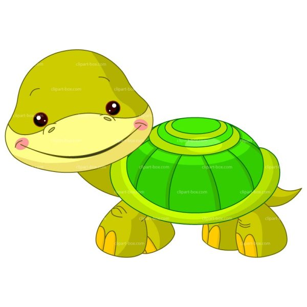 turtle clip art free cartoon