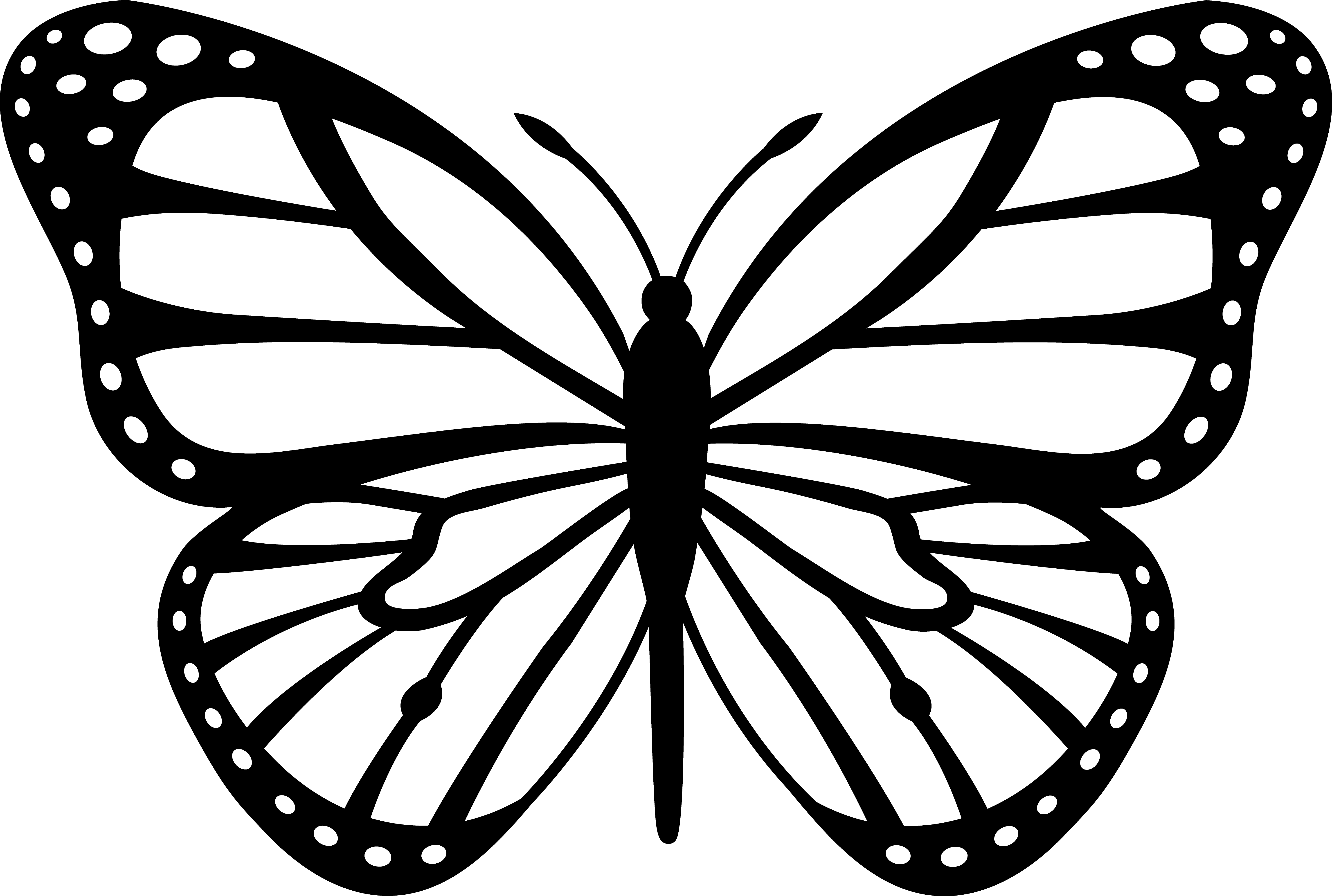 Black And White Butterfly Clip Art Coloring Page For Kids Kids