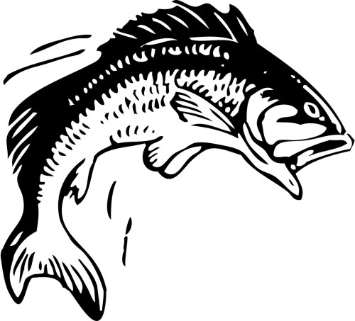 small resolution of clip art fish bass fishing clip art free printable fish stencils