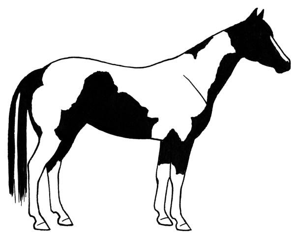 horse clipart 5 - clipartix