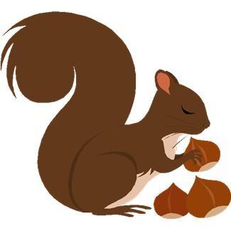 squirrel clipart 8 - clipartix