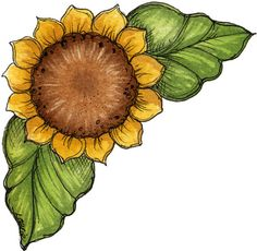 sunflowers clipart 2 - clipartix