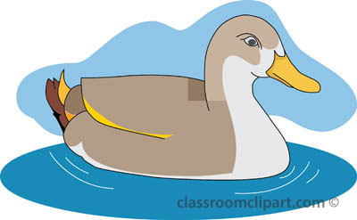 duck clip art - clipartix