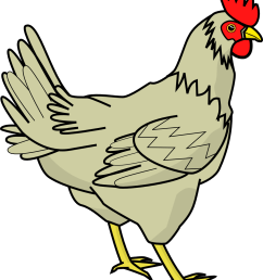chicken clipart black and white free clipart images [ 999 x 1185 Pixel ]