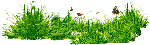 small resolution of grass clipart 5