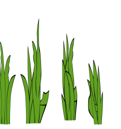 grass outline border free clipart images [ 2400 x 1200 Pixel ]