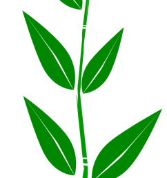 leaf free leaves clipart free clipart graphics images and photos 3 2 [ 512 x 1742 Pixel ]