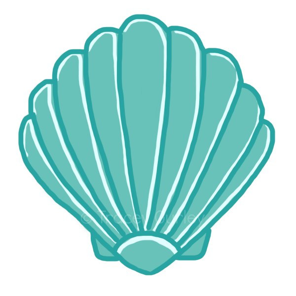 Free Seashell Clipart Pictures Clipartix