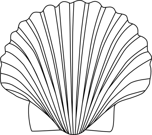 20 Ocean Clip Art Black And White Shell Ideas And Designs