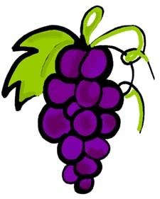 grapes clipart 11 - clipartix