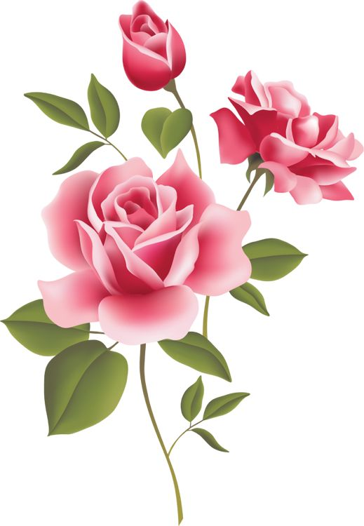 free roses clip art