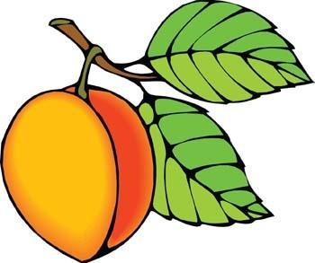 free peach clip art