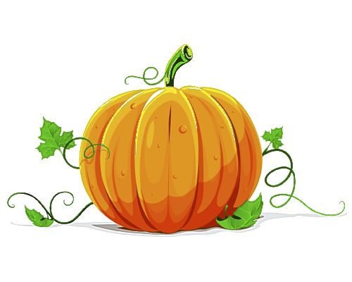 pumpkin patch cute clipart