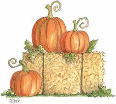 pumpkin patch halloween pumpkins