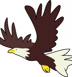 bald eagle clipart free pictures [ 1920 x 1800 Pixel ]
