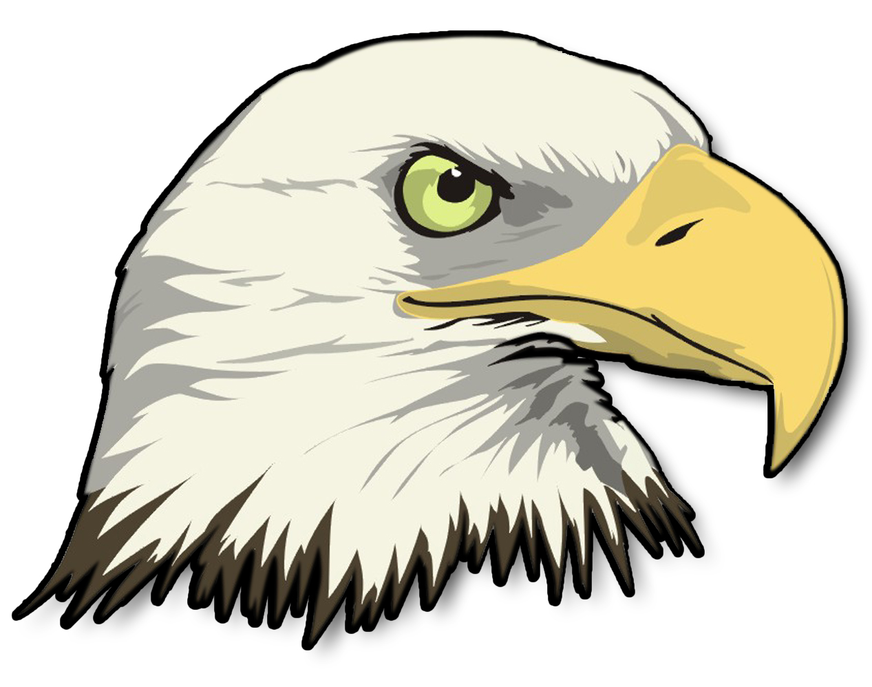 hight resolution of cartoon bald eagle clipart