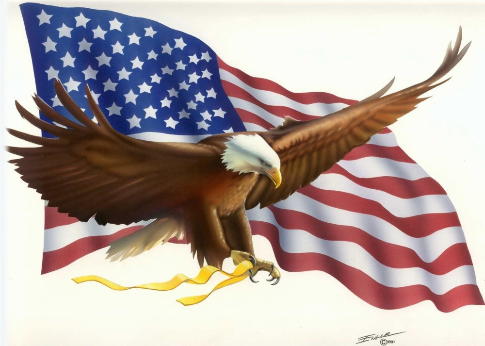 medium resolution of patriotic images american clipart bald eagle