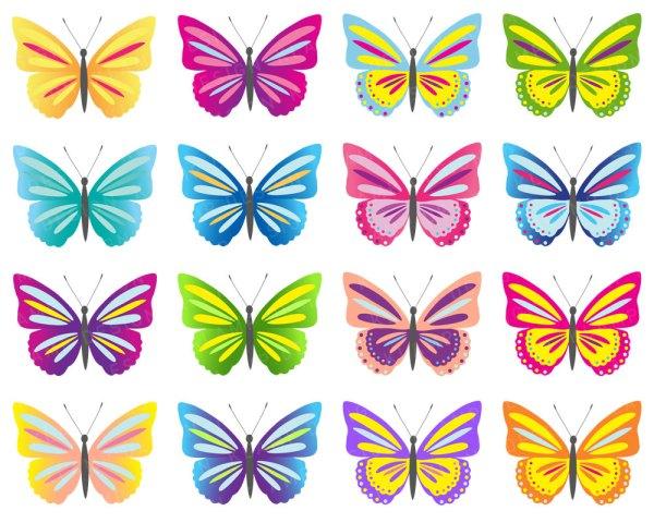 butterflies cartoon butterfly clipart