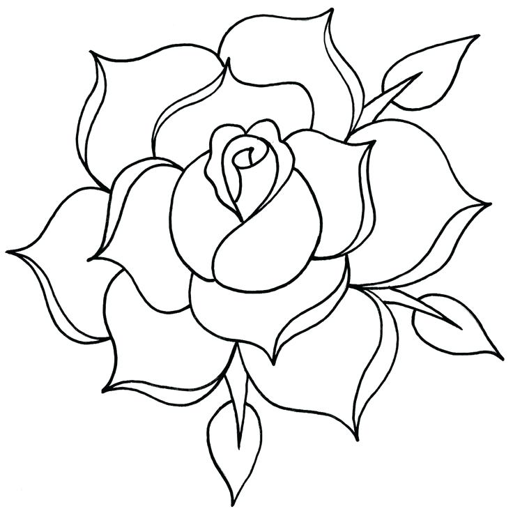 Simple rose outline tattoo drawing roses jpg - Clipartix