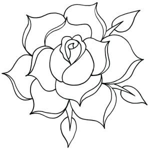 outline rose tattoo simple drawing roses clipartix
