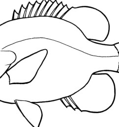 lovely of fish clipart black and white letter master outline 5 jpeg [ 1395 x 864 Pixel ]