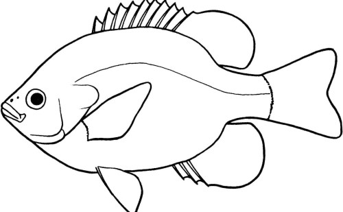 small resolution of lovely of fish clipart black and white letter master outline 5 jpeg