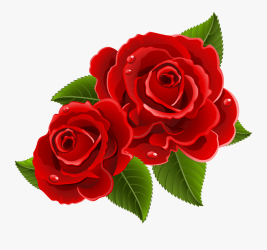 beast beauty rose clipart transparent flowers clipartkey