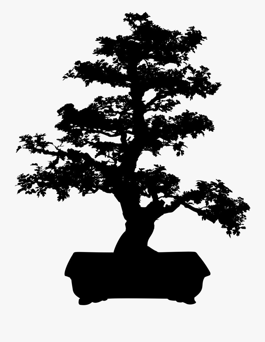 Bonsai Silhouette : bonsai, silhouette, Bonsai, Silhouette, Transparent, Clipart, ClipartKey