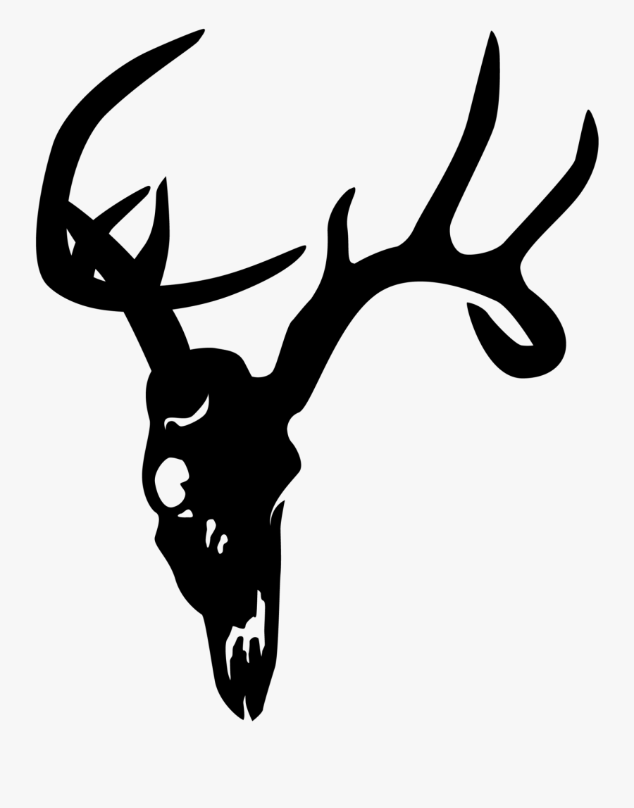 Deer Skull Clipart : skull, clipart, Skull, Whitetail, Decal, Transparent, Clipart, ClipartKey