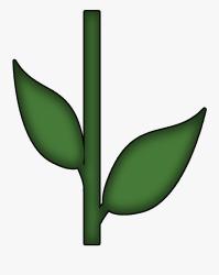 stem flower clip leaves transparent clipart clipartkey