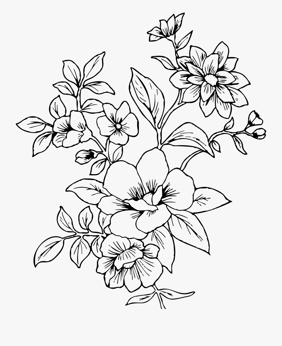 Flowers Drawing Png : flowers, drawing, Clipart, Floral, Transparent, Flower, Drawing, ClipartKey