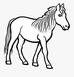 Quarter Clipart Head Illustration Clip Art Horse Black And White Free Transparent Clipart ClipartKey