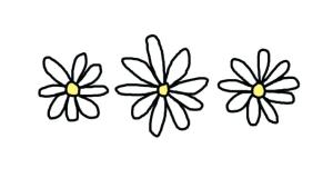 daisy drawing simple clipart clipartmag