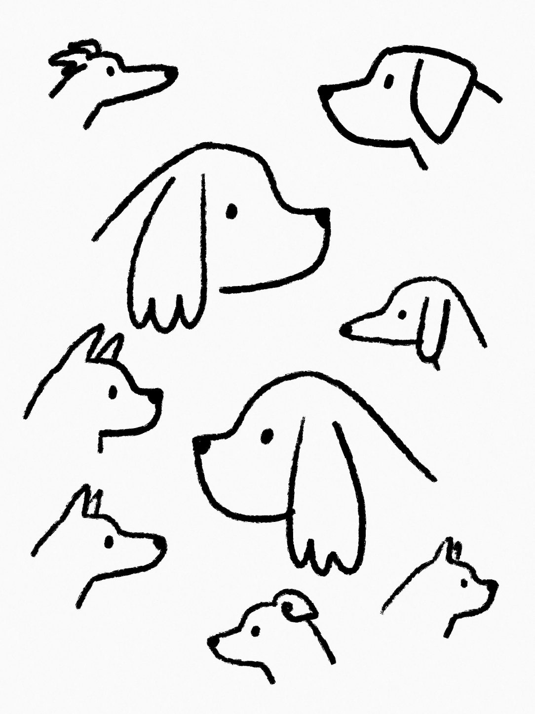 Boxer Dog Line Drawing