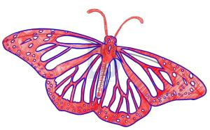 butterfly draw easy step drawing realistic butterflies clipartmag