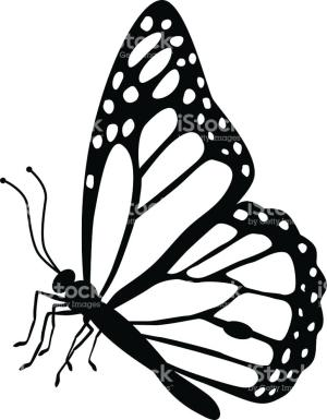 butterfly tattoo vector monarch side drawing easy drawings designs illustrations clipartmag clipart royalty graphic gettyimages embed getdrawings