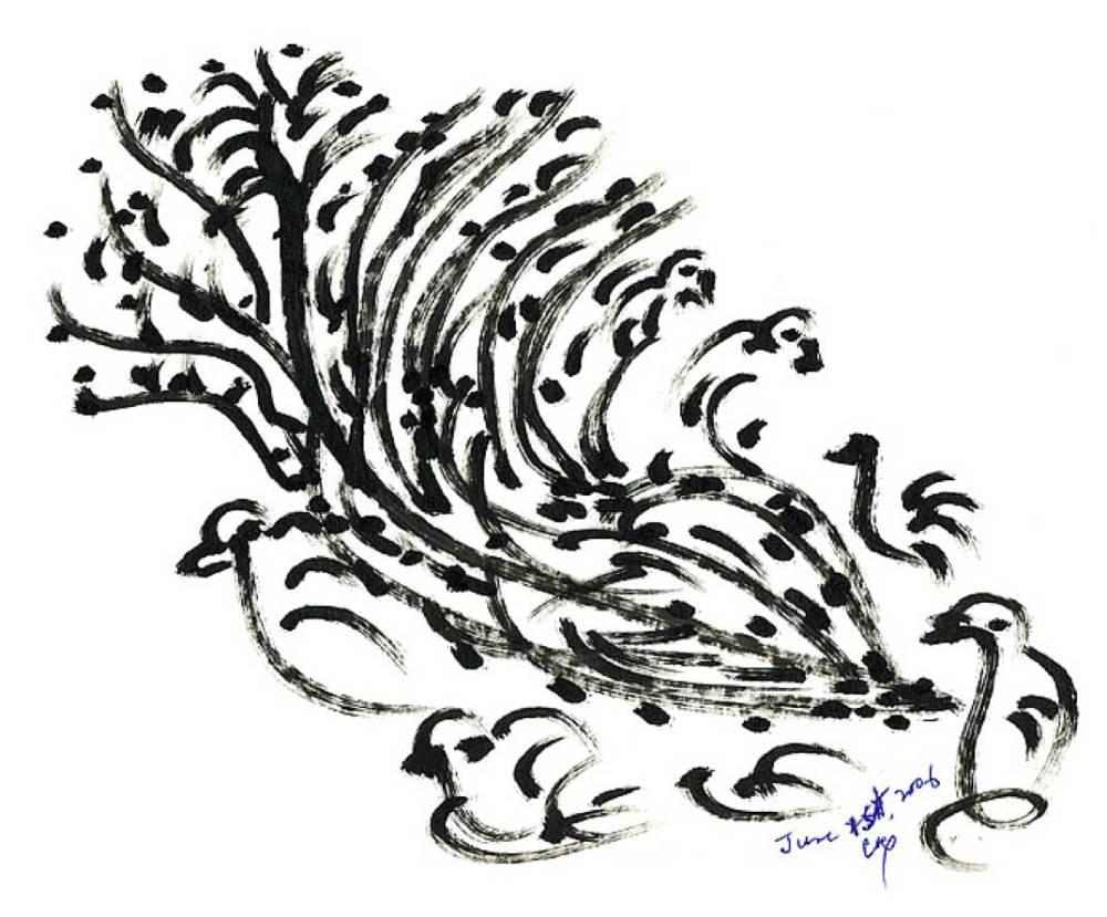 medium resolution of 1073x890 bird drawing