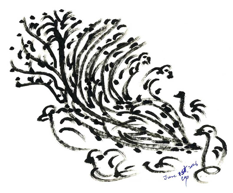 hight resolution of 1073x890 bird drawing