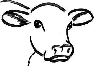 cow head drawing face outline clipart dairy draw cartoon drawings bull cattle painting clip cows clipartmag easy animal kindee fed