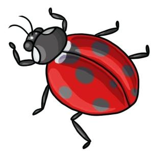 clip ladybug clipart bug lady ladybugs ladybird drawing cartoon drawings cliparts easy draw transparent border library clipartmag insects cliparting computer